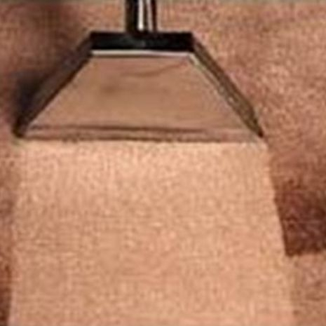 Vacuumed carpet