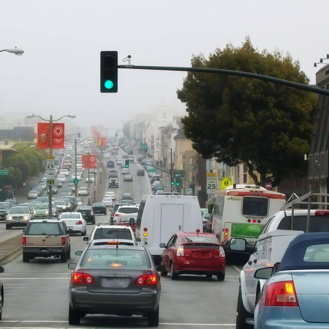 car insurance, traffic, accident, wreck, deer, glass