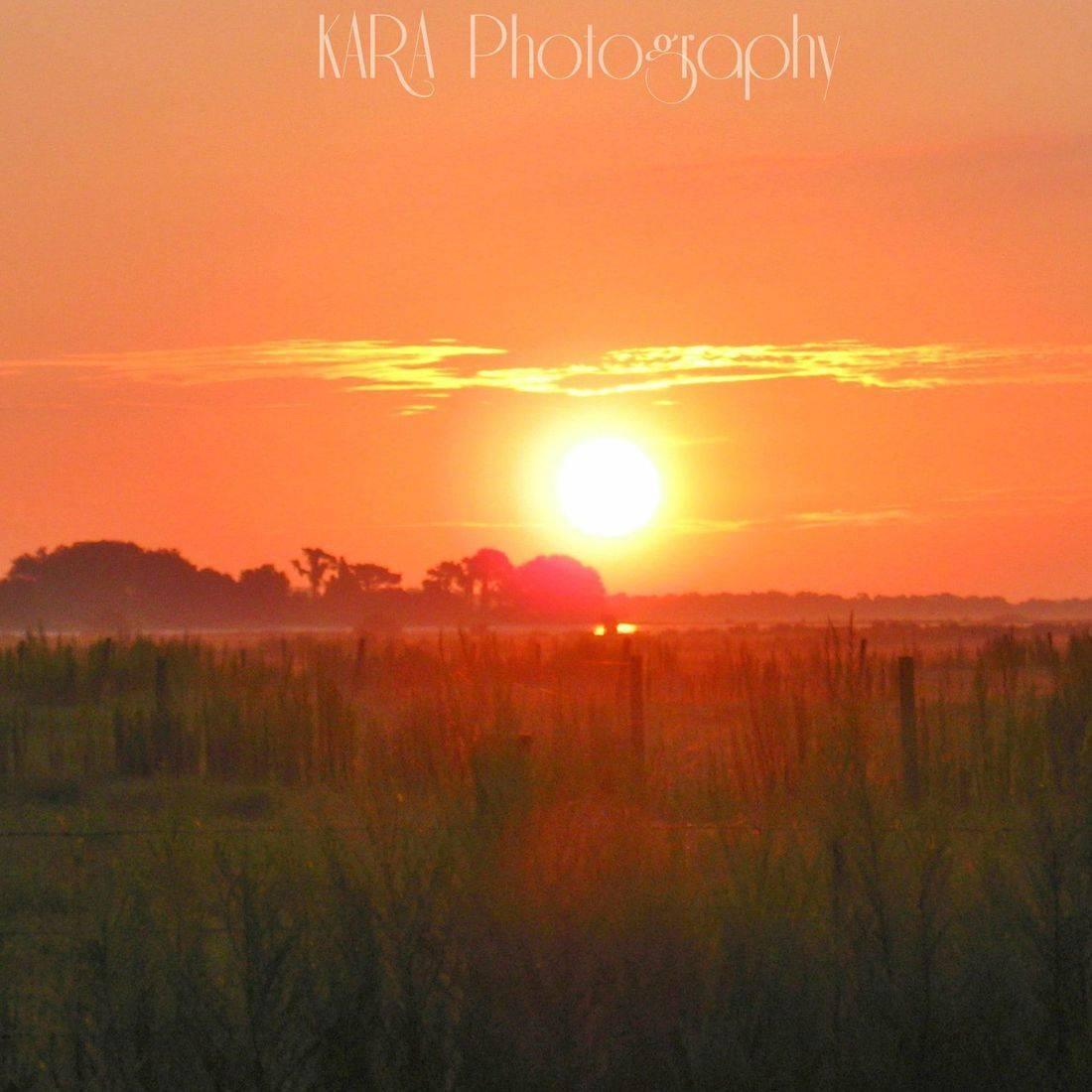 Sunrise, Florida, Farm