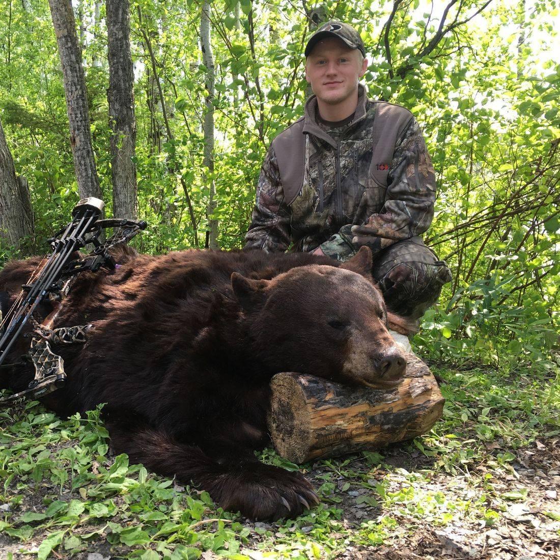 Manitoba black bear, bear hunting, black bear, hunting