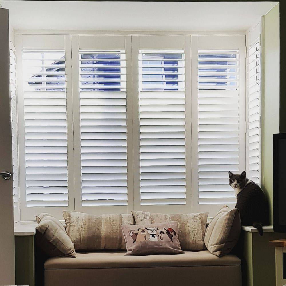 shutters, windows, blinds,