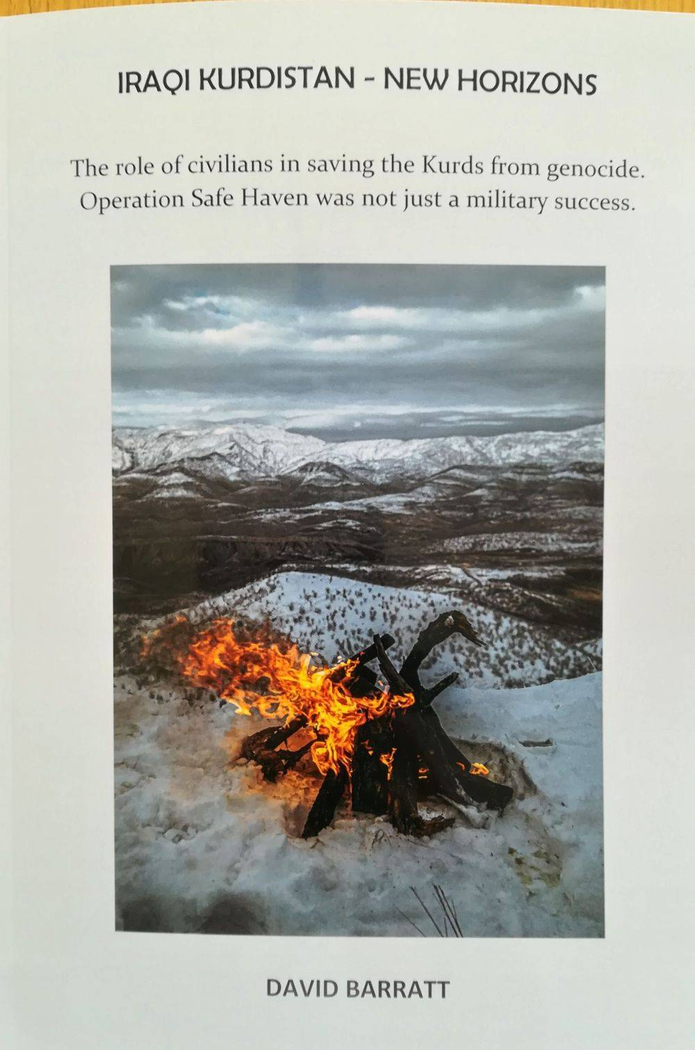 Operation Safe Haven, Gulf War, military history