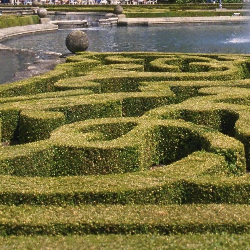 herzberg lawn