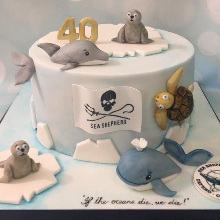 Sea Shepherd Wale Seal Turtle Dolphin Birthday Celebration Novelty Cake