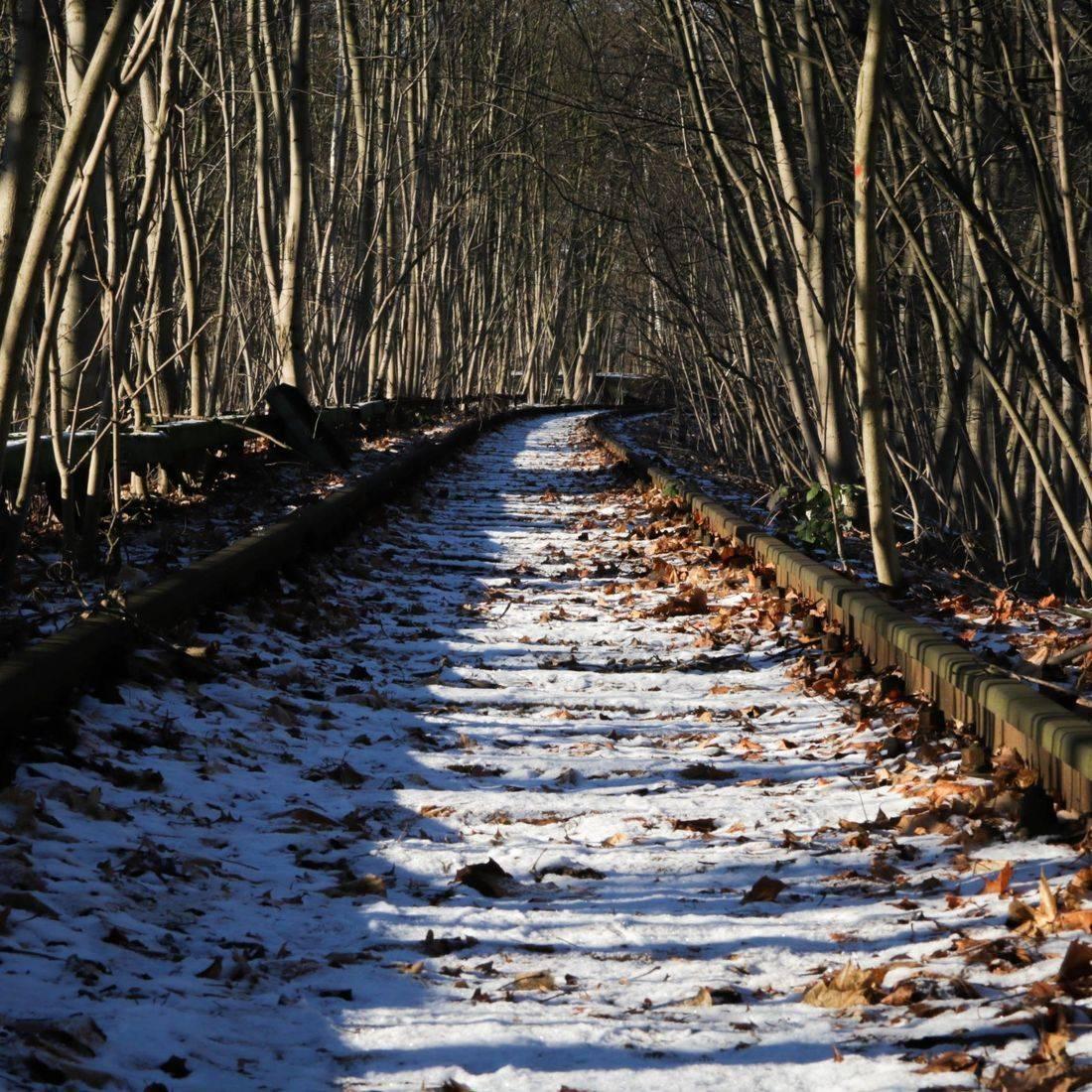 Urbex Photography  Siemensbahn