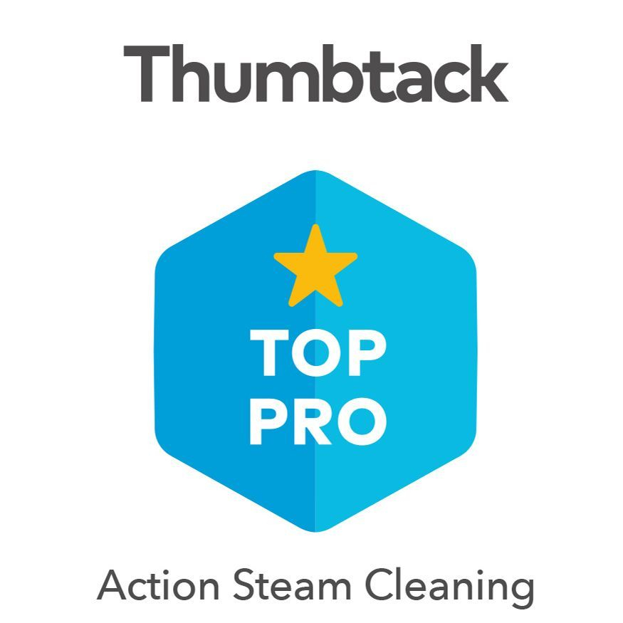 action steam cleaning