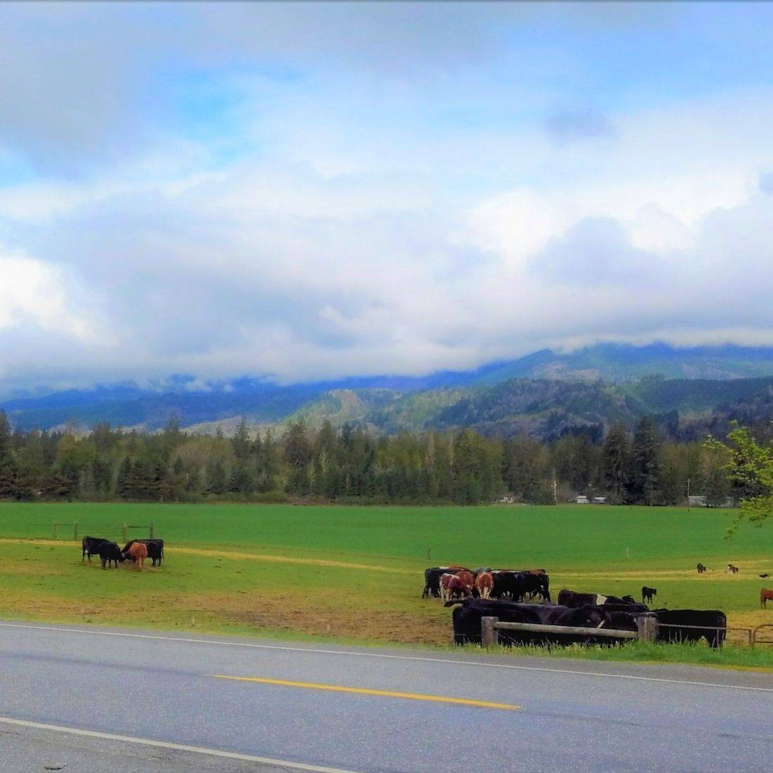 Ovenell's Heritage Inn, Lodging in the North Cascades