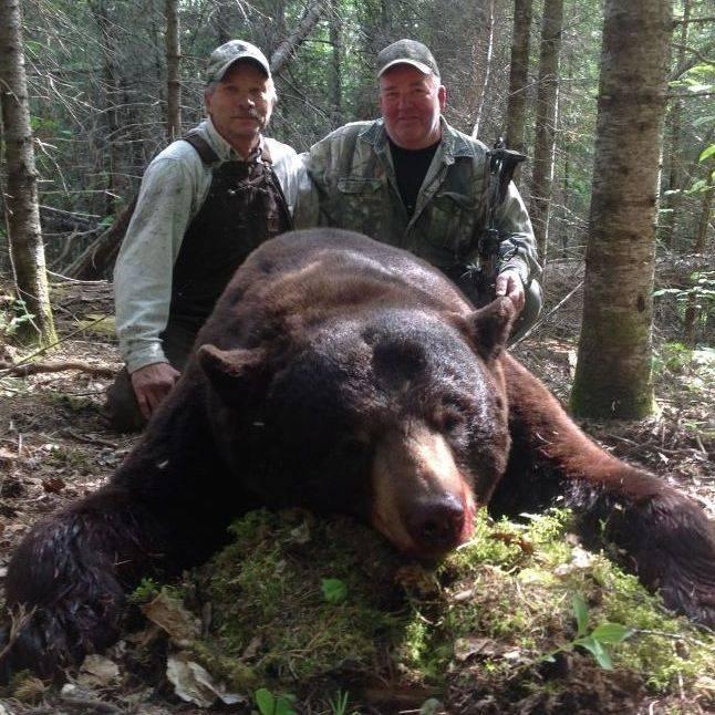 Hunt, Hunting, Big Black Bear, Bear,  Hunt Manitoba Canada