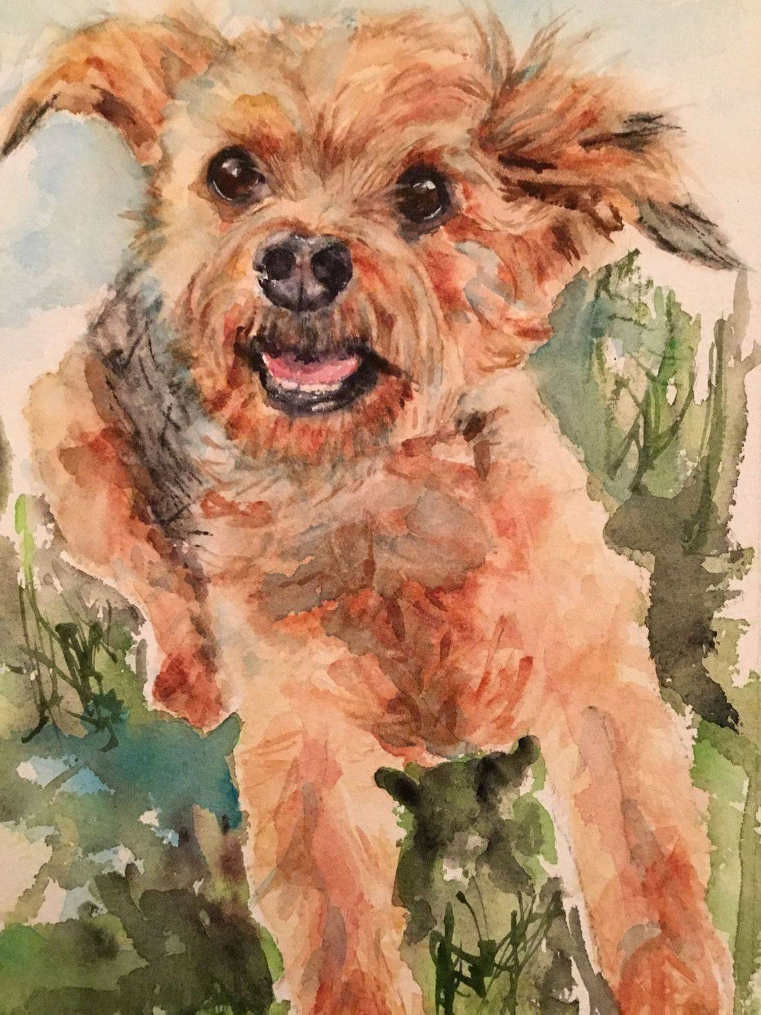 Dog painting, dog portrait, R Putbrese Watercolor, Rebecca/Becky Krutsinger, watercolor painting