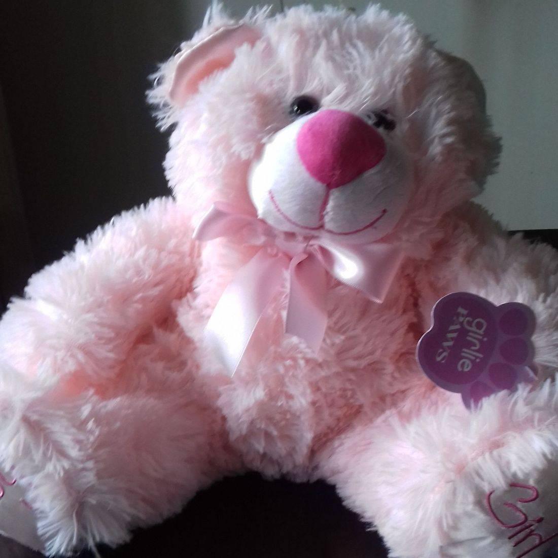 Pink cuddly bear
