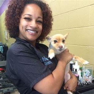 Pet Parlor Tawanna Grooming