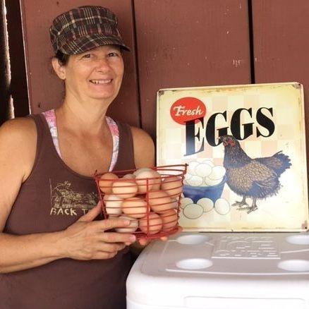 duck eggs farmer chicken fresh farm
